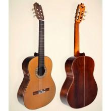 27202 Guitarra Flamenca Juan Montes Aniversario AES