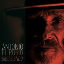 28048 Antonio