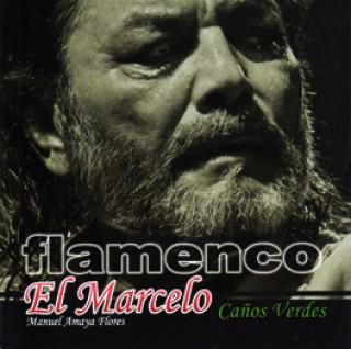 19709 Manuel Amaya Flores