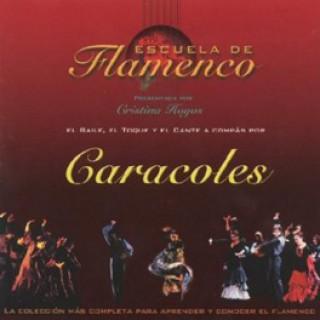 11045 Escuela de flamenco - Caracoles