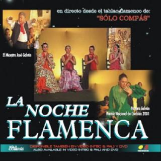 12667 La noche flamenca