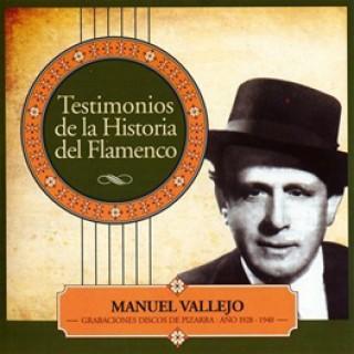 19455 Manuel Vallejo - Testimonio de la historia del flamenco