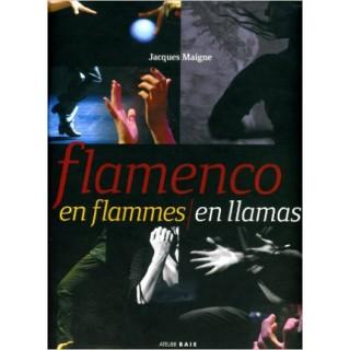 19529 Flamenco en llamas - Jacques Maigne
