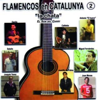 19643 Flamencos en Cataluña 2 -