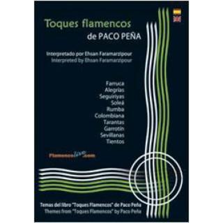 20050 Paco Peña interpretado por Ehsan Faramarzipour - Toques flamencos