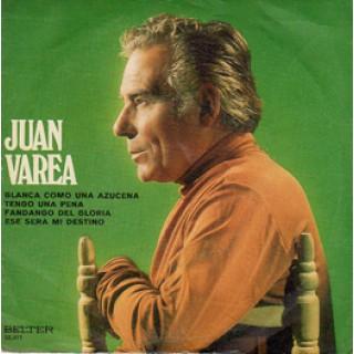 22425 Juan Varea