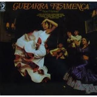 23806 Pepe Martinez - Guitarra flamenca