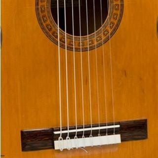 14500 Golpeador transparente guitarra