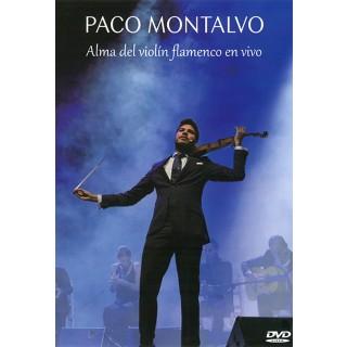 25715 Paco Montalvo - Alma del violín flamenco en vivo