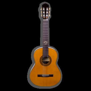 Guitarra Clásica Martínez MCG-65 Palosanto