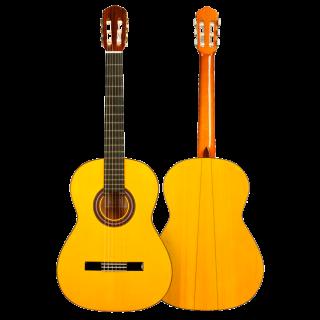 Guitarra flamenca FP14 ciprés, estudio profesional