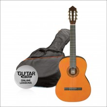 27407 Guitarra Aston 1/2
