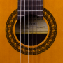 Boca Guitarra Clásica Martínez MCG-65 Palosanto