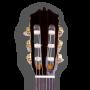 Frontal Guitarra Clásica Martínez MCG-65 Palosanto