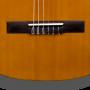 Puente Guitarra Clásica Martínez MCG-65 Palosanto