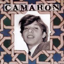14924 Camarón de la Isla Venta de Vargas