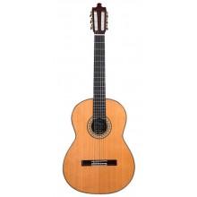 23952 ÁLVAREZ & BERNAL GUITARRA ESPECIAL F/C PALOSANTO