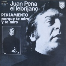 28234 El Lebrijano - Pensamiento