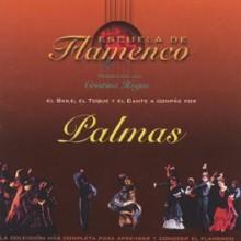 11049 Escuela de flamenco - Palmas