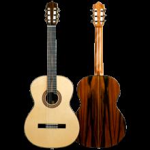 Guitarra flamenca Martinez Modelo MFG-RS electroacústica Palosanto