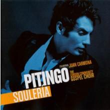 17518 Pitingo - Soulería