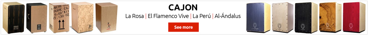 Cajon Flamenco, the best brands
